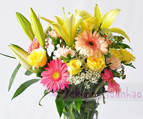 hoa tươi Tây Ninh