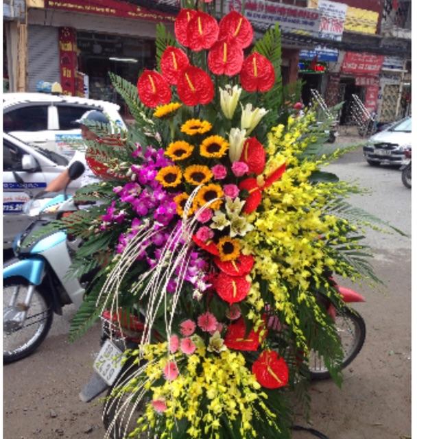 Shop hoa khai Tân Châu