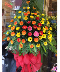 Shop hoa khai trương Dương Minh Châu